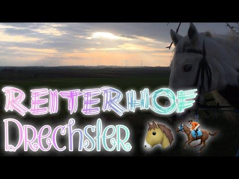 REITERFERIEN bei REITERHOF DRECHSLER | KindOfJessi