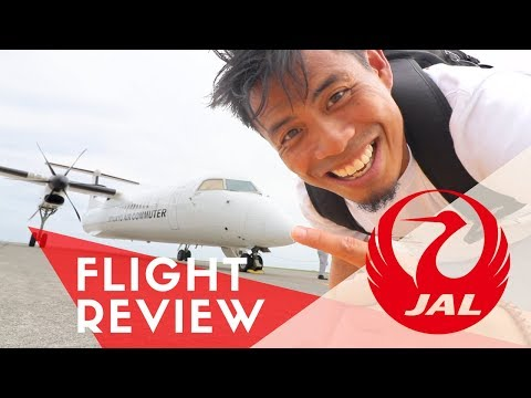 JAL Japan Airlines Flight Review | Is this their SMALLEST AIRPLANE EVER?