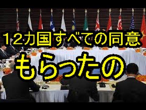 韓国TPPためらう 環太平洋戦略的経済連携協定 韓国tpp参加したい 中国とのFTA 中国が最大貿易国 TPPへの参加を決断 pp不参加理由 拒否 加入 参加表明 参加メリット 日本