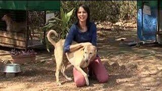 Seema visits Rescue Charitable Trust again