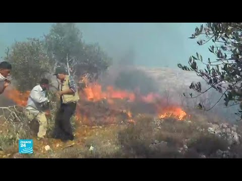 تزايد اعتداءات المستوطنين على مزارعي الزيتون في الضفة الغربية  - نشر قبل 4 ساعة