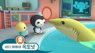 바다 탐험대 옥토넛 - 샤크 위크 스페셜 | 상어를 보호하세요 - 모음집