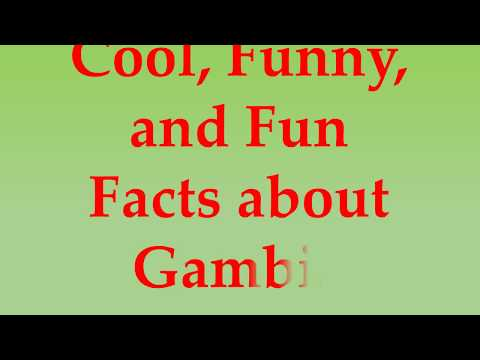 Cool, Funny, and Fun Facts about Gambia