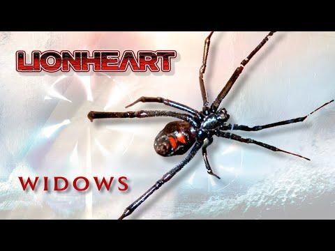Lionheart Widows - the Lockdown Video