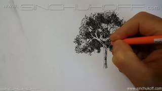 Рисуем дерево линером