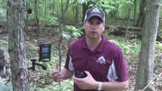 BestGameCamera- Ltl Acorn Wireless Antenna Booster (Wilson Antenna)