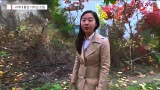 """'땅 침범""""…고려대, 청소용역부 7천만원 뜯으려다 망신"""
