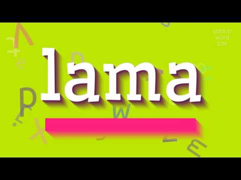 """How to say """"lama""""! (High Quality Voices)"""