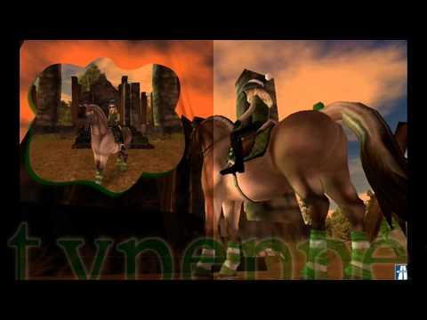 Silver's Wonderful World of Horses