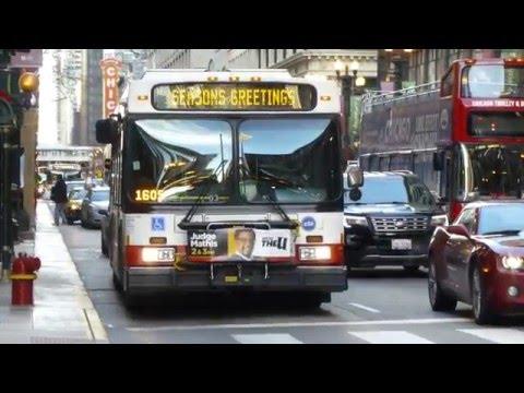 CTA Transit Bus 2008  2006 New Flyer DE60LF  D40LF Routes 6  36