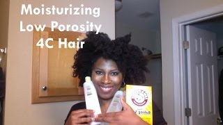 Moisturizing Low Porosity 4C Hair | Life with Meech (91)
