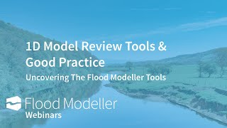 1D model review tools and good practice
