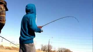 Des Moines Iowa River fishing GIANT FLAT HEAD ON BASS POLE.