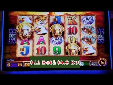 Buffalo Gold Slot Machine Bonuses With $4.8 and $12 Bet