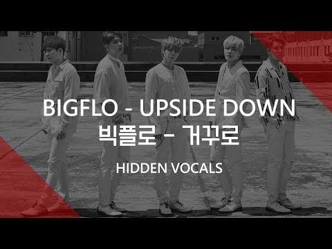 [HIDDEN VOCALS] BIGFLO - 거꾸로 (UPSIDE DOWN)