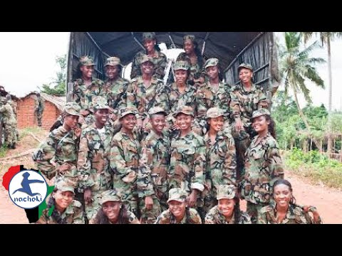 Top 10 Largest Militaries in Africa 2017 List