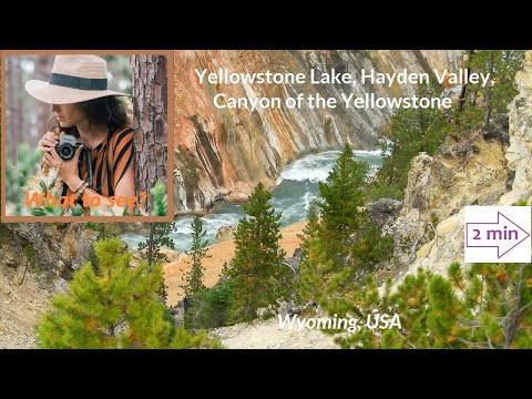 WHAT TO SEE : Hayden Valley, Lake and Falls of the Yellowstone (2 mn in North America Collection)