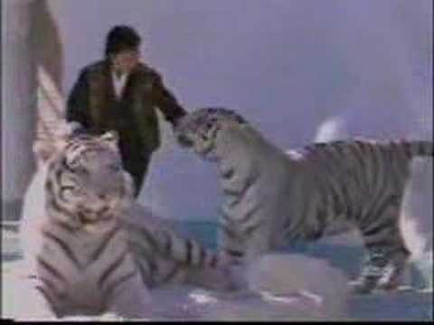 Siegfried and Roy Interview