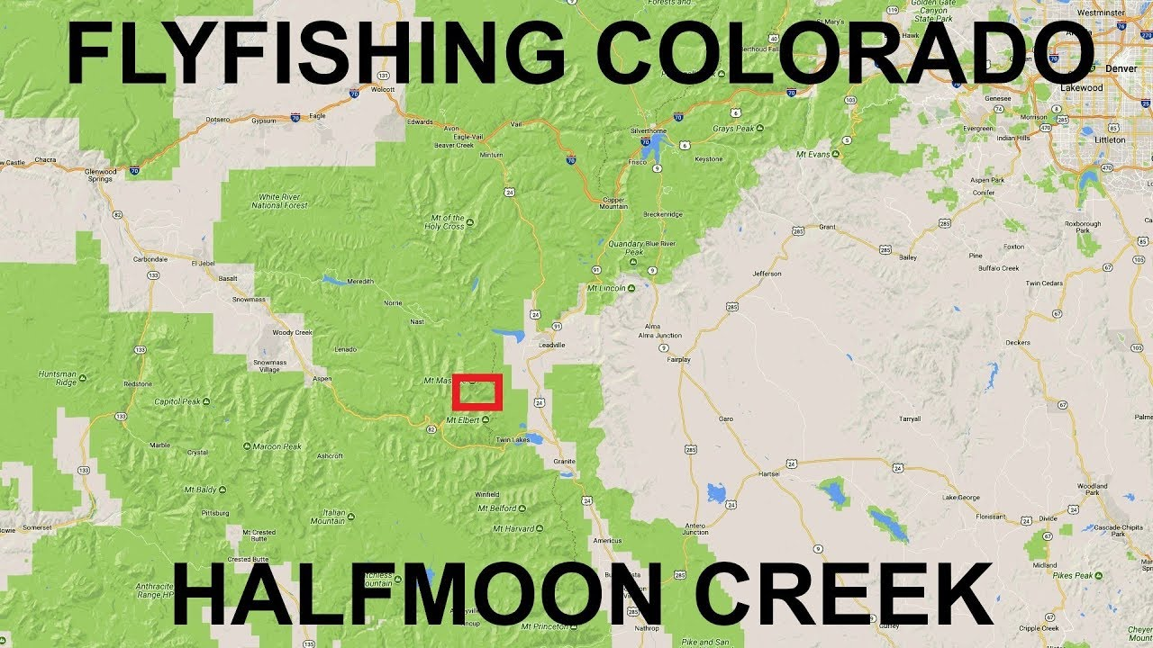 Fishing near leadville co halfmoon creek youtube for Colorado out of state fishing license