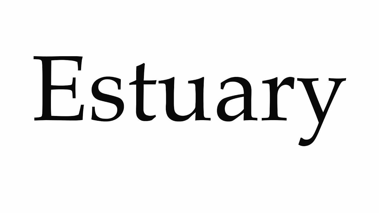 How to Pronounce Estuary