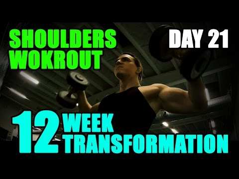 Tags of arnold blueprint cat meme tube arnold schwarzeneggers blueprint to cut shoulders l 12 week transformation challenge l day 21 malvernweather Gallery