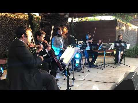 Animals By Martin Garrix String Quartet