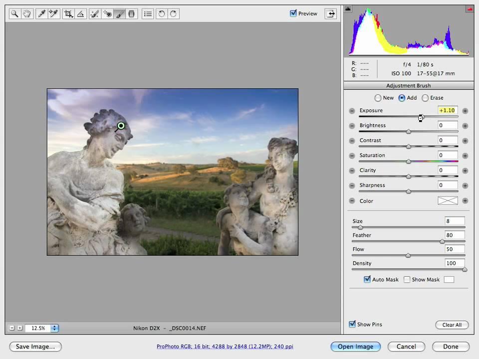 Adobe Camera Raw - Adjustment Brush Tutorial Video