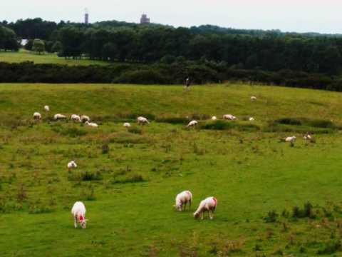 The Curragh of Kildare, Christy Moore