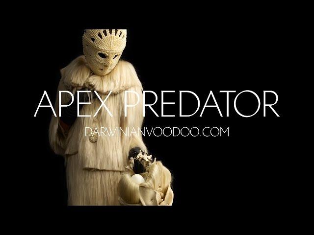 Apex Predator | Darwinian Voodoo