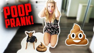 HILARIOUS FAKE DOG POOP PRANK! (DAY 180)