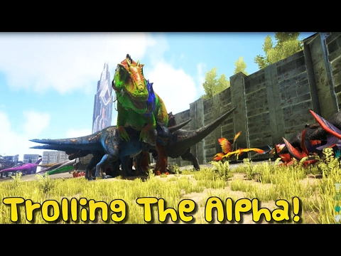 ARK:Survival Evolved - XBOX ONE - TROLLING THE ALPHA TRIBE!