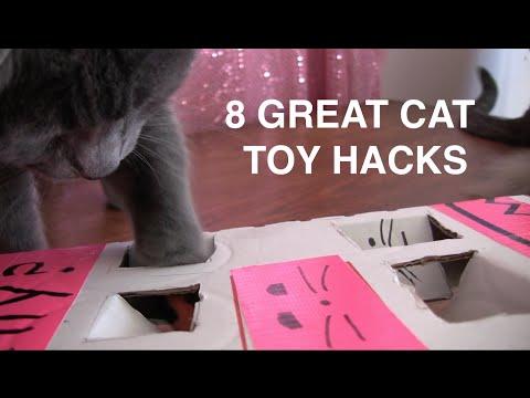 8 Great Cat Toy Hacks