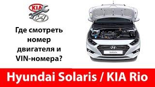 Где находится номер двигателя Киа Рио / Hyundai Solaris? А VIN коды на кузове?