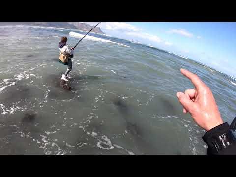 Fishing Republic   Strand Reefs