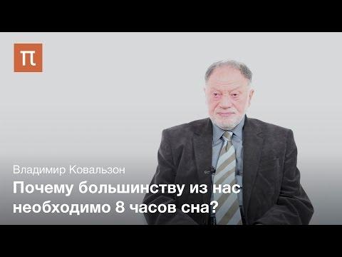 Природа сна - Владимир Ковальзон
