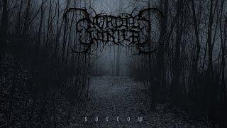 Nordicwinter - Sorrow [Full Album] (Atmospheric/Depressive Black Metal)