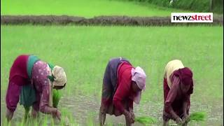 Budget 2018:  What the Agriculture Sector Expects from Budget?