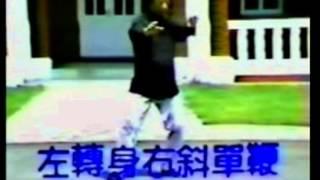 王延年楊家秘拳127式第三段 63~77)