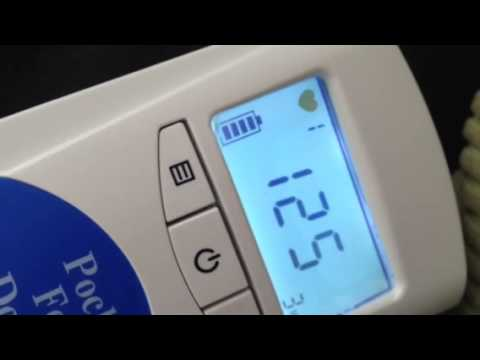 Heartbeat At 7 Weeks 6 Days On Home Fetal Doppler Youtube