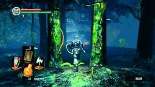 Dark Souls: Darkroot Garden Soul Farm