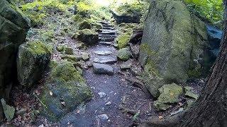 Eddy Path - Niagara Glen Nature Reserve