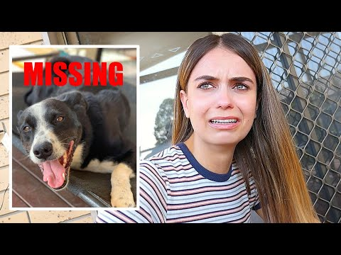 SHE LOST HER DOG :(