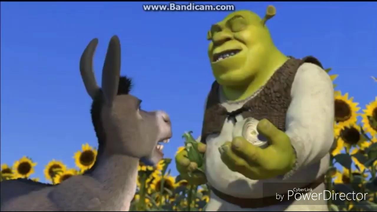 Shrek Onions Have Layers Windows XP Meme Song YTP - YouTube