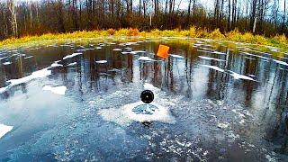 ВОТ ВЫ КАКИЕ ЩУКИ ЛЕСНОГО ОЗЕРА Рыбалка на ЖЕРЛИЦЫ по первому льду