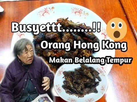 reaksi-majikan-||makan-belalang-goreng-dari-indonesia-||-suara-bmi
