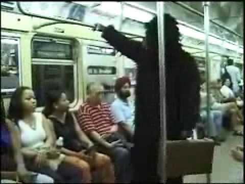 Gorilla In The City