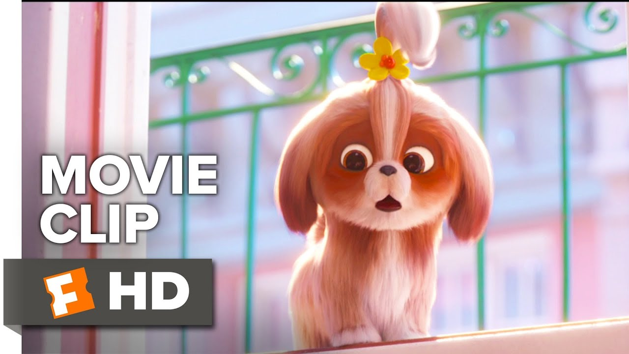 The Secret Life Of Pets 2 Movie Clip Daisy Asks For Help 2019 Movieclips Coming Soon Youtube
