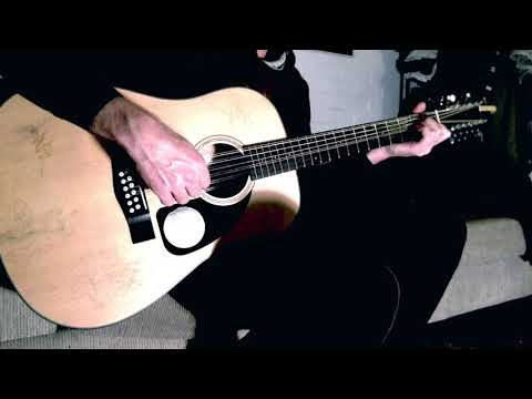 Social Gratification on the 12 string with iMovie audio affects - Ylia Callan Guitar
