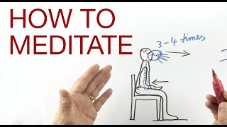 HOW TO MEDITATE by Hans Wilhelm