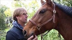 Pferde machen Menschen: Peter Großmann